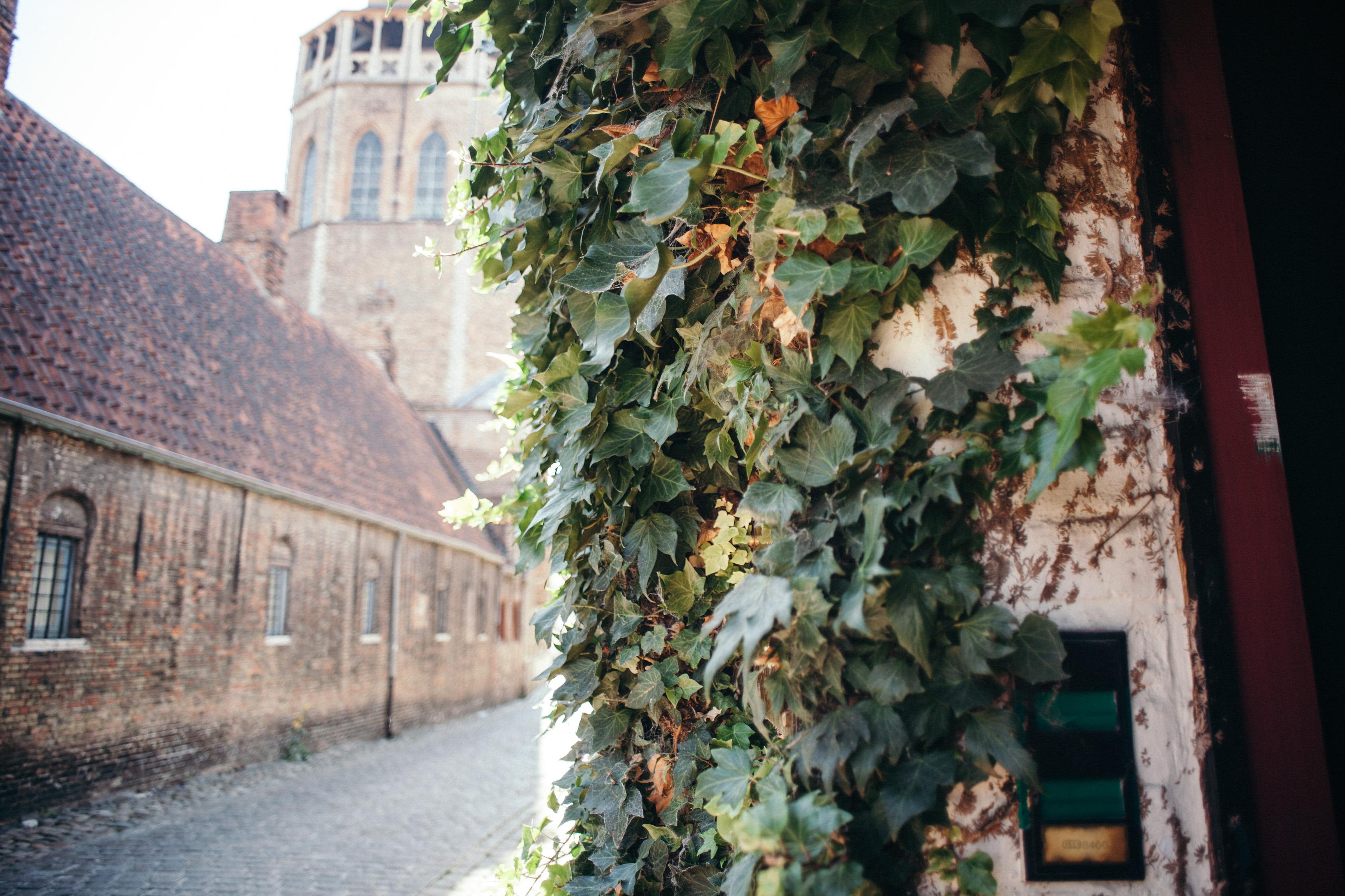 Bruges city streets